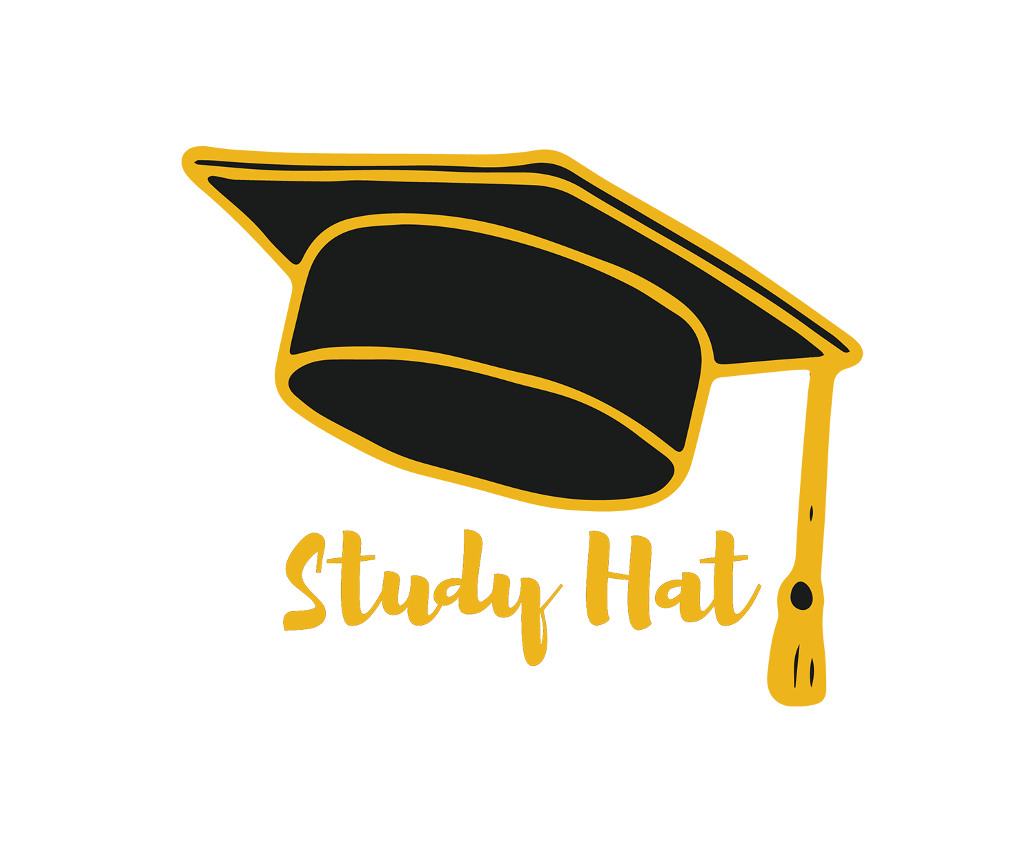 Study Hat I Online Learning Made Easy